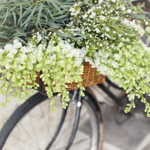 Botanicals Bike with Flowers