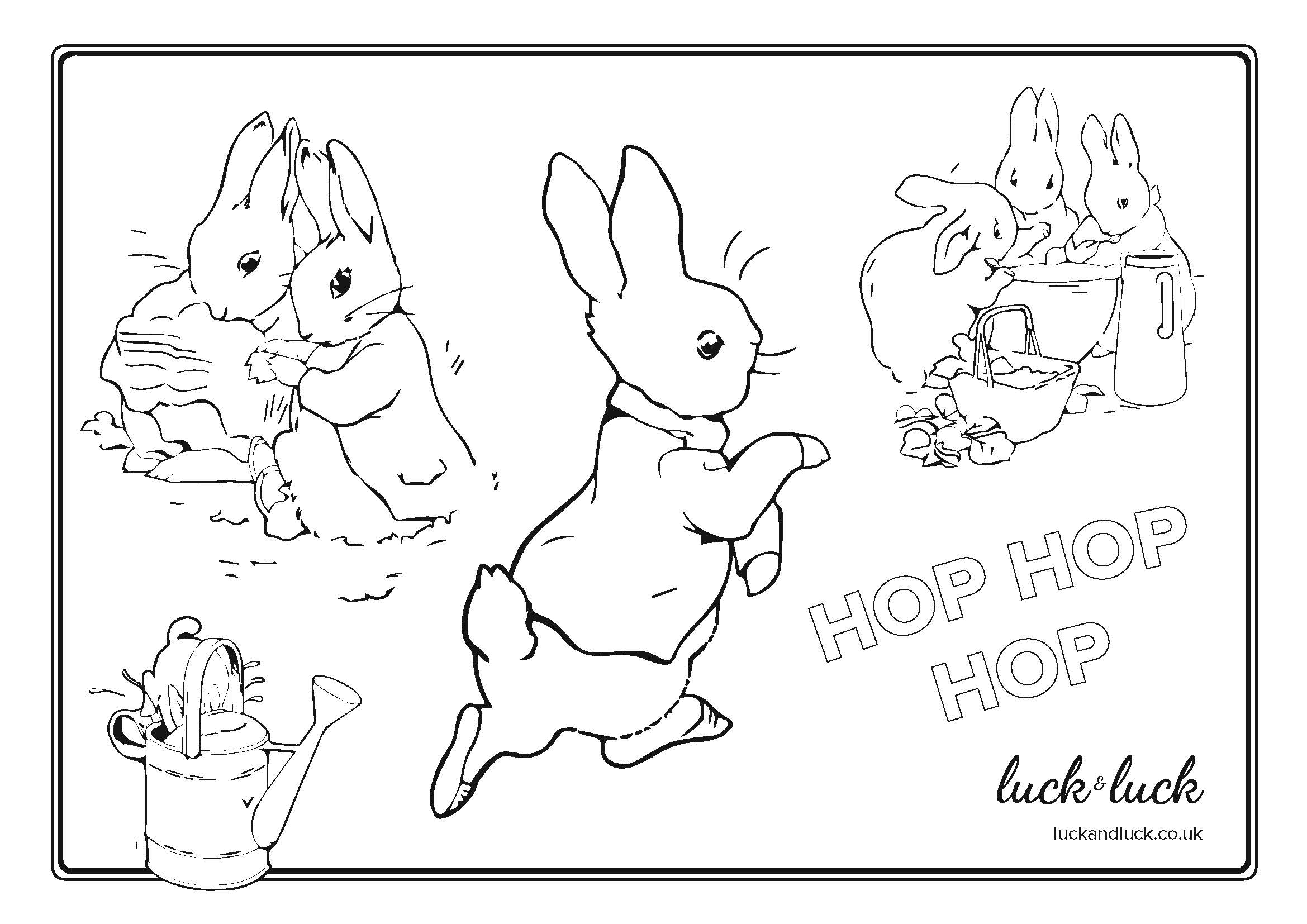 Peter Rabbit Picture Colouring Page Children